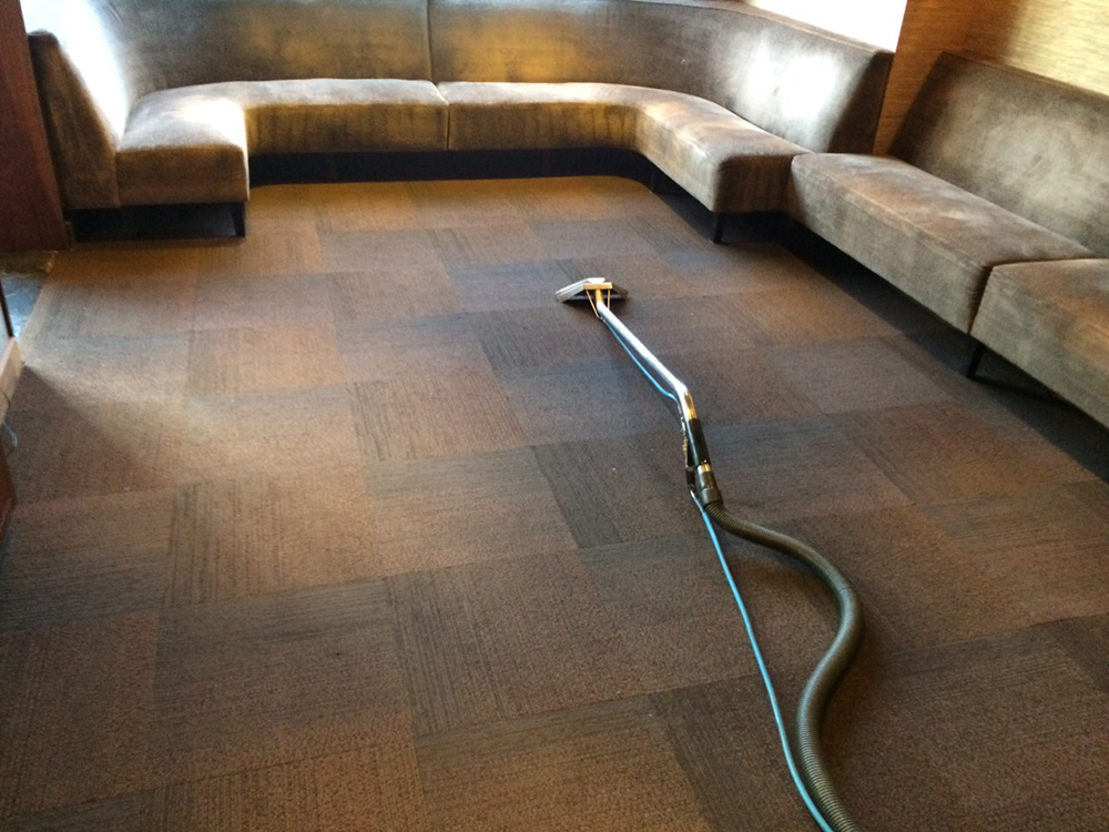 Carpet Cleaning Washington Dc